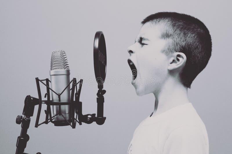 Microfoon, Audiomateriaal, Audio, Megafoon stock afbeeldingen