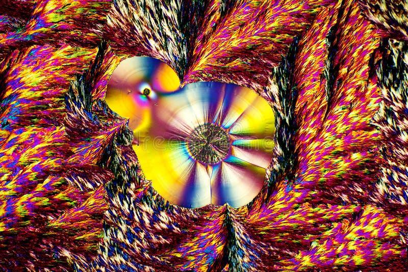 Micrográfo abstracto de los cristales del ácido ascórbico en arsenal brillante imagenes de archivo