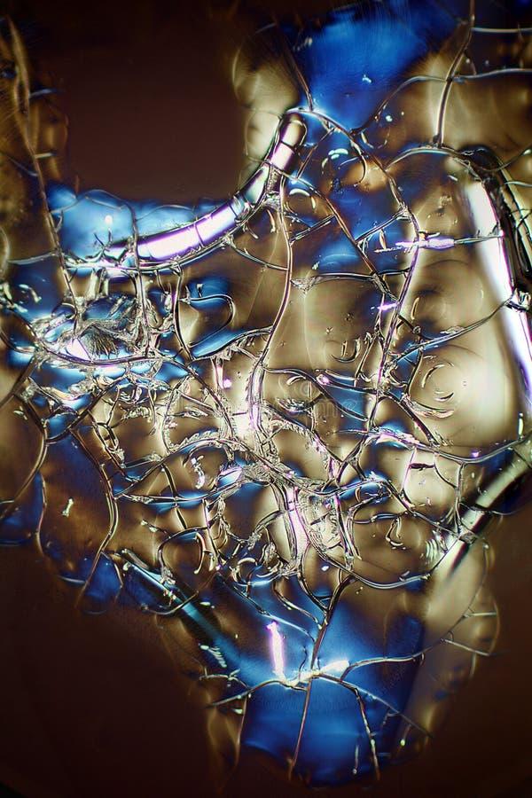 Micrografia abstrata da albumina que foi enviada no espaço fotos de stock royalty free