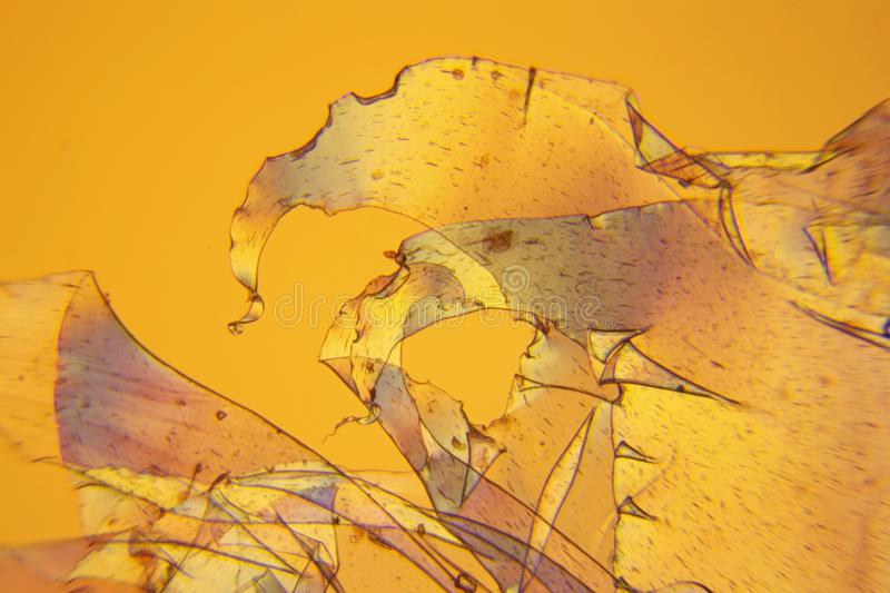 Micrograph of polarised light 02 royalty free stock images