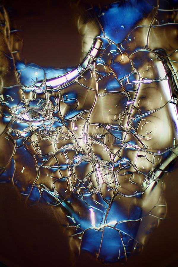 Micrographe abstrait de l'albumine qui a été envoyée dans l'espace photos libres de droits