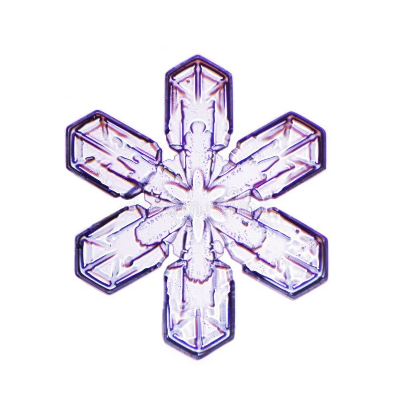 Micrographic płatek śniegu w białym tle (śnieżny kryształ) zdjęcia stock
