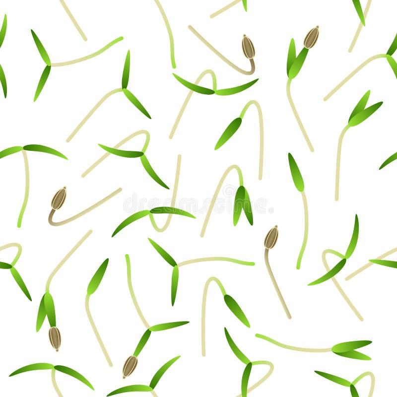 Microgreens红萝卜 植物的发芽种子 无缝的模式 维生素补充,素食主义者食物 库存例证