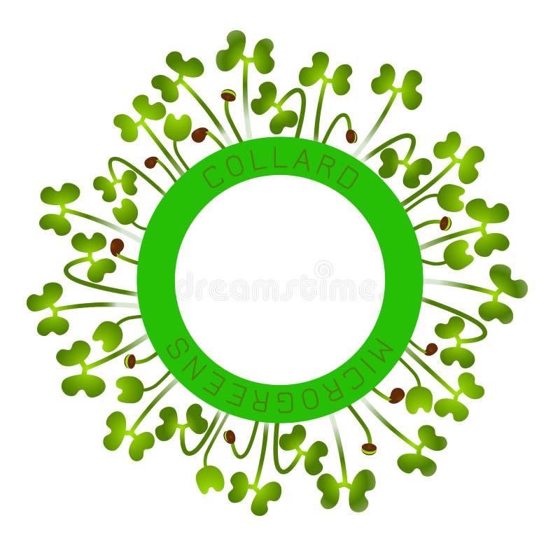 Microgreens Collard Seed förpackande design, rund beståndsdel i mitten Runt om honom groddar royaltyfri illustrationer