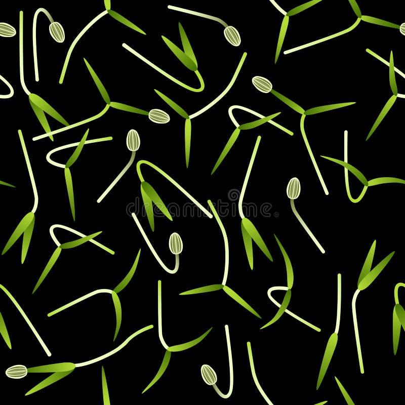 Microgreens-Fenchel Keimungssamen einer Anlage Nahtloses Muster Vitaminerg?nzung, Nahrung des strengen Vegetariers lizenzfreie abbildung