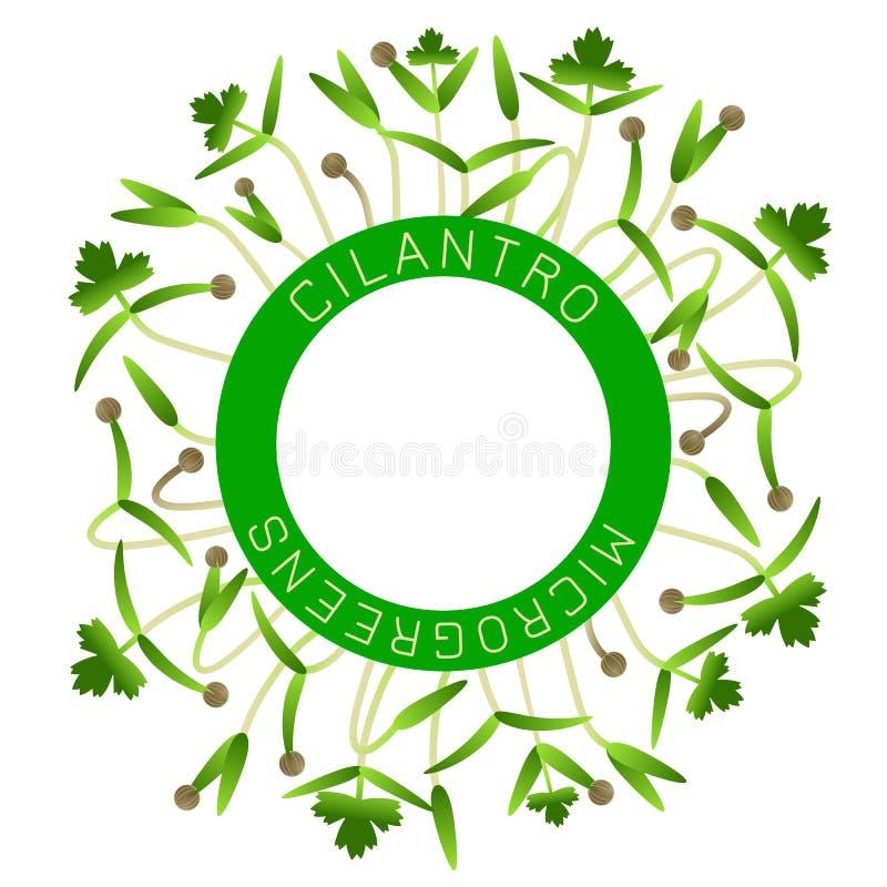 Microgreens koriander Seed f?rpackande design, rund best?ndsdel i mitten Runt om honom groddar royaltyfri illustrationer