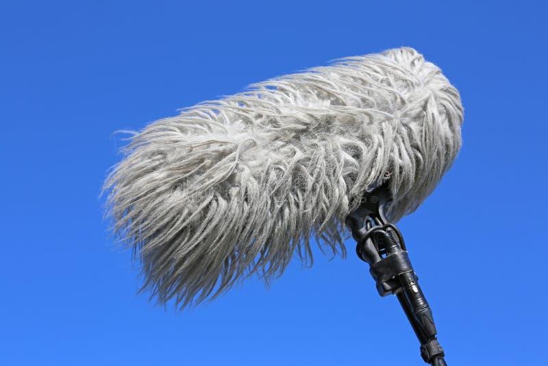 Microphone_windshield foto de archivo libre de regalías