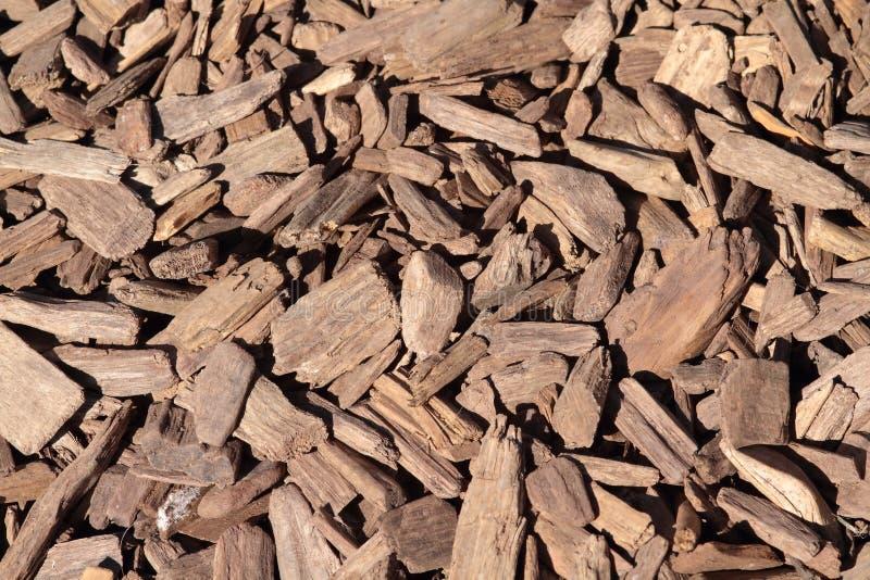 Microplaqueta de madeira fotografia de stock royalty free