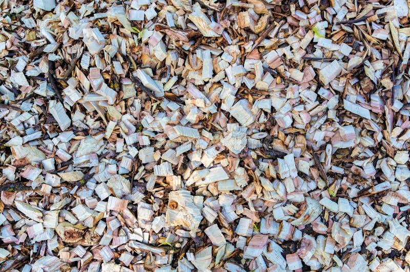 Microplaqueta de madeira Madeira recicl processamento Eco-amigável imagem de stock