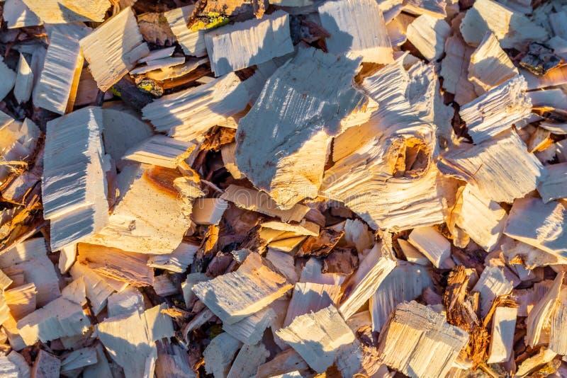 Microplaqueta de madeira Madeira recicl processamento Eco-amigável imagem de stock royalty free