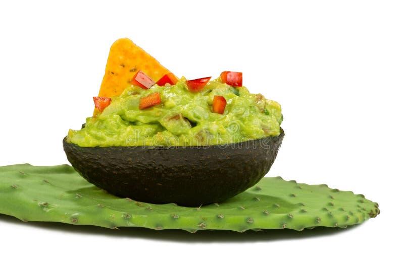 Microplaqueta do Guacamole e de tortilha no cacto de pera espinhosa imagem de stock royalty free