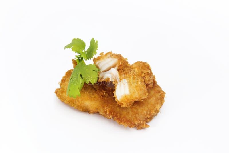 Microplaqueta dos peixes foto de stock