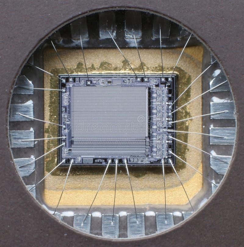 Microplaqueta macro poderosa imagens de stock