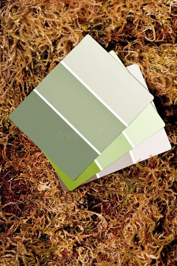 Microplaquetas da pintura da cor em um fundo do musgo imagens de stock royalty free