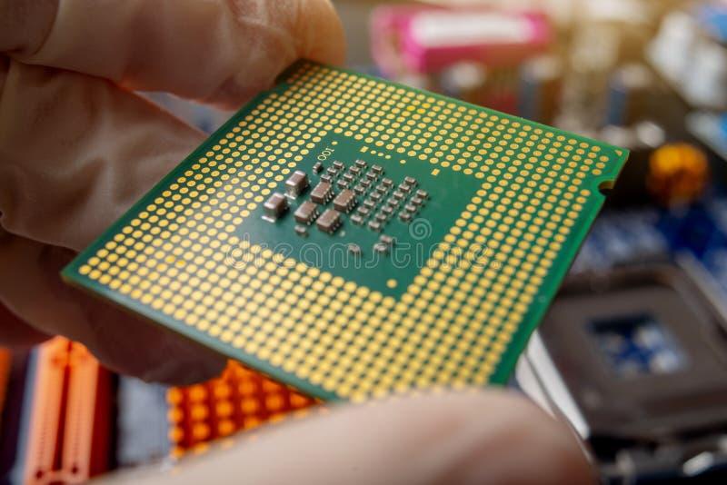 Microprocessador da microplaqueta nas mãos de um técnico do coordenador para os computadores De alta tecnologia e microchip do re imagens de stock