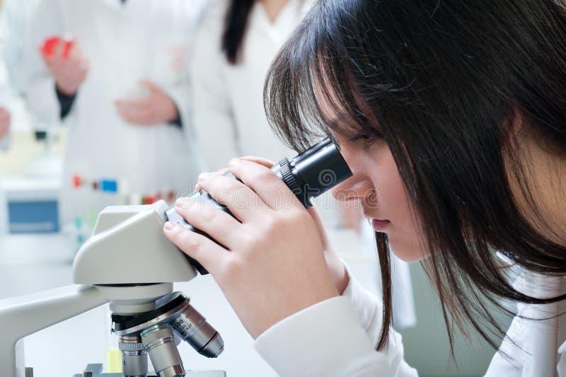Microscoop stock fotografie