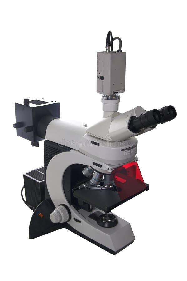 Microscope électronique moderne photo stock