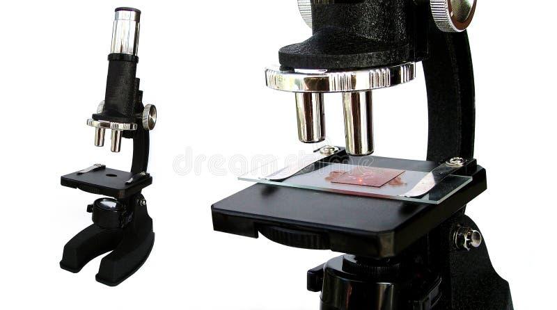 Microscope Stock Photos