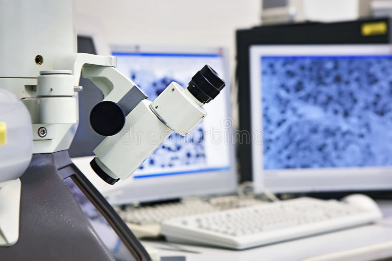Microscope royalty free stock image