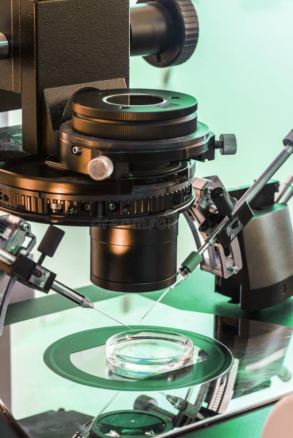 Microscopio de IVF fotos de archivo