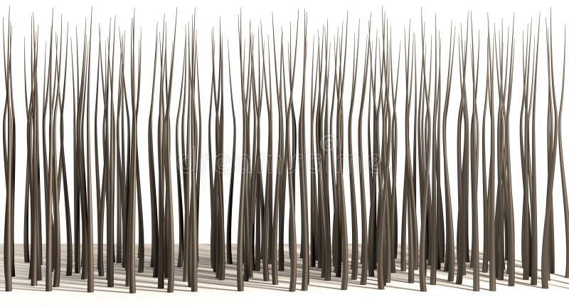 Microscopische Haarwortels royalty-vrije stock afbeelding
