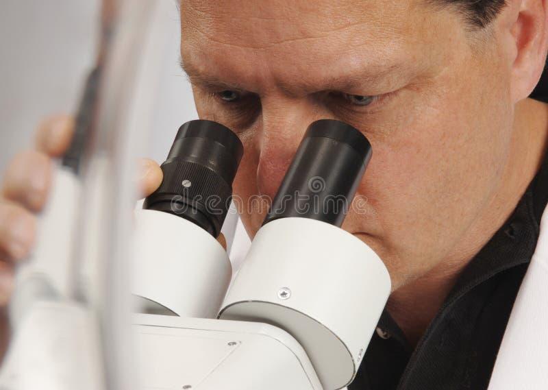 Microscopista fotografie stock libere da diritti