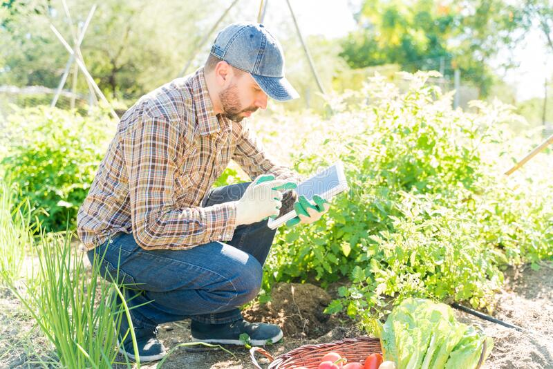 Farmer Using Wireless Computer At Farm stock images