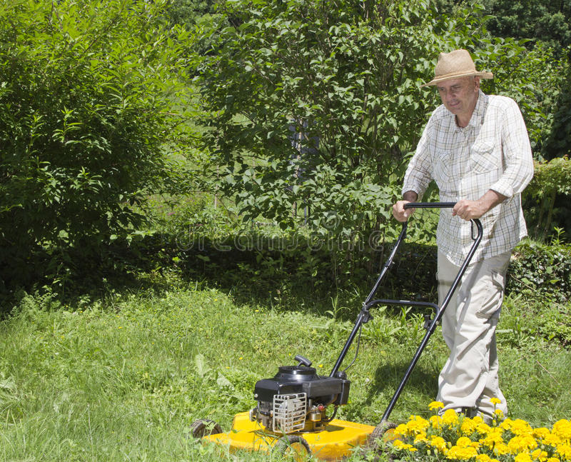 Download Mid Age Man Is Mowing The Grass Stock Photo - Image: 25232164