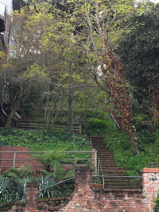 The very beautiful, barely known Greenwich steps, San Francisco, 6, stock photos