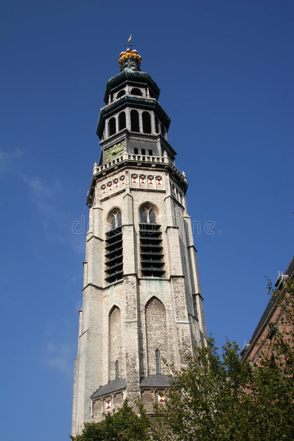 Free Middelburg Church Royalty Free Stock Photography - 11725297