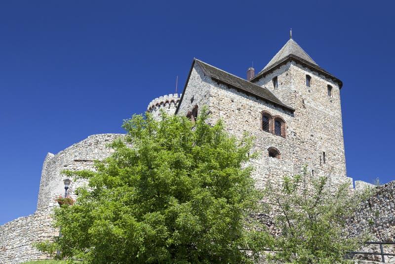 Middeleeuws gotisch kasteel, Bedzin-Kasteel, Hoger Silesië, Bedzin, Polen royalty-vrije stock fotografie