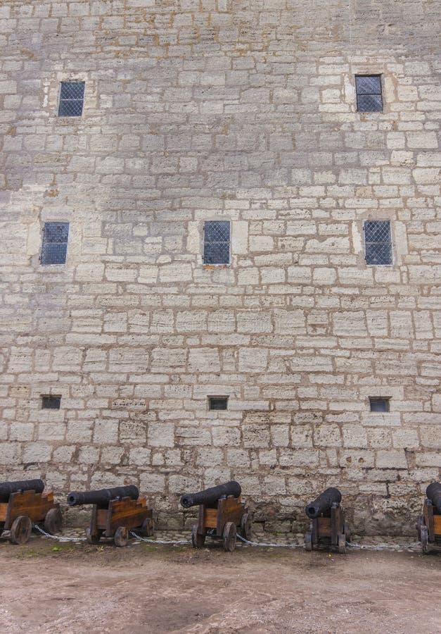 Middeleeuwse kasteelmuur en kanonnen stock afbeelding