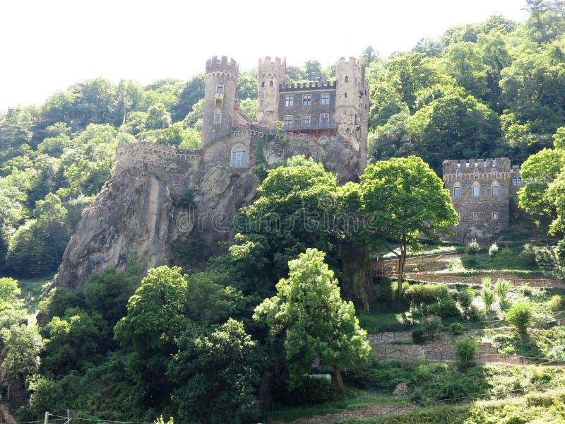 Middeleeuwse kastelen op de Rijn-Rivier in Europa royalty-vrije stock afbeelding