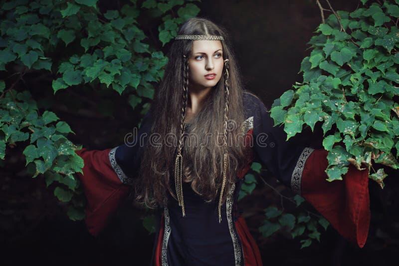 Middeleeuwse mooie dame stock foto's