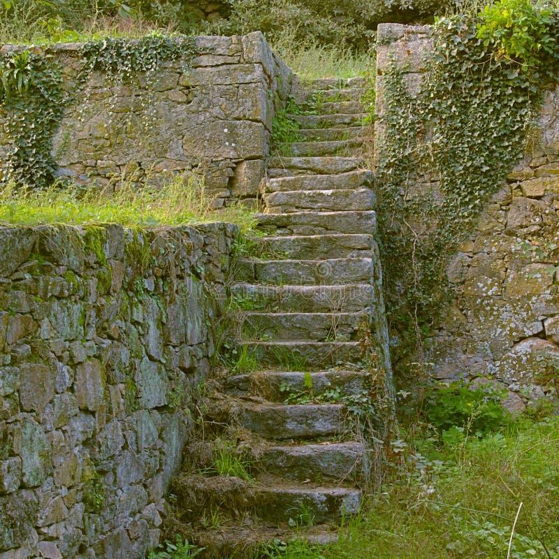 Middeleeuwse ruïnes - treden stock foto