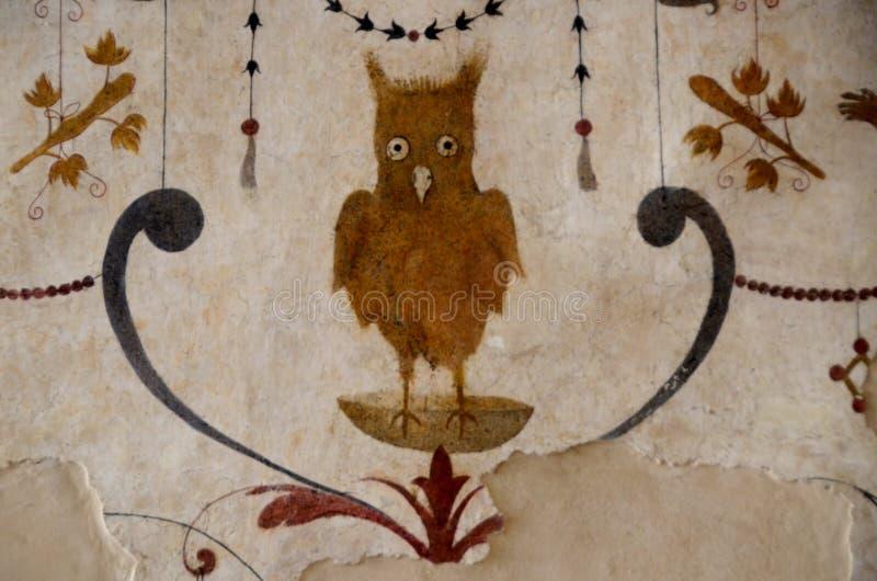 Middeleeuwse tekening van uil in Assisi Italië royalty-vrije stock afbeeldingen