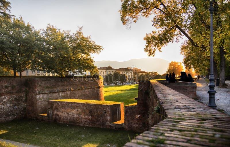 Middeleeuwse vestingsmuur in Luca, Italië stock afbeeldingen