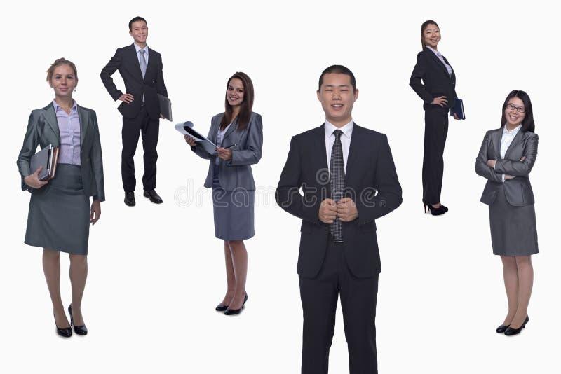 Middelgrote groep glimlachende bedrijfsmensen, portret, volledige lengte, studioschot stock foto's