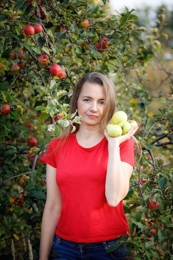 Midden oude vrouw die in rode t-shirt groene appelen in de tuin houden stock foto's
