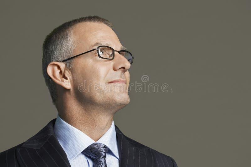 Midden Oude Zakenman In Glasses Smiling royalty-vrije stock foto