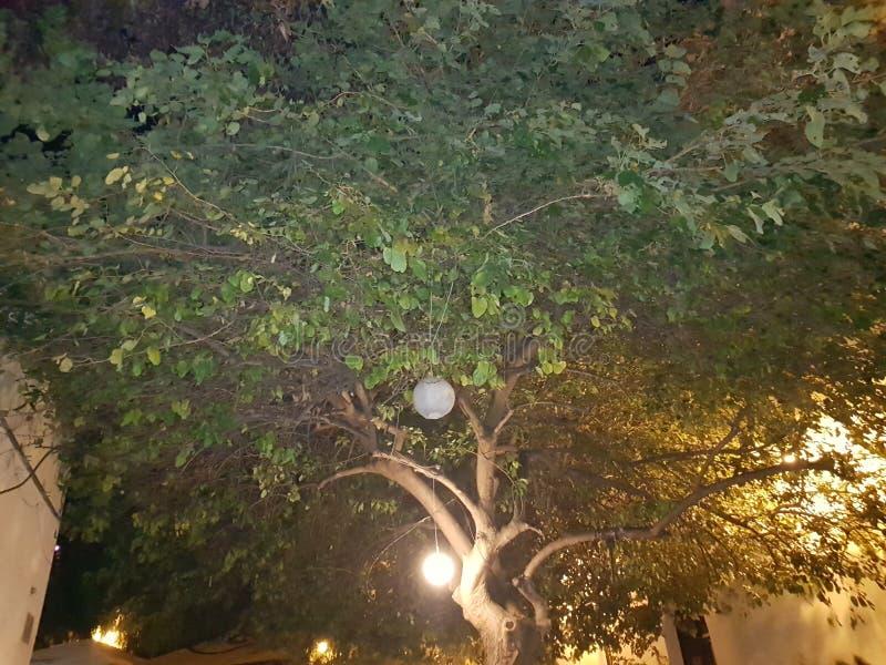 Middernacht drie in Palermo royalty-vrije stock foto's