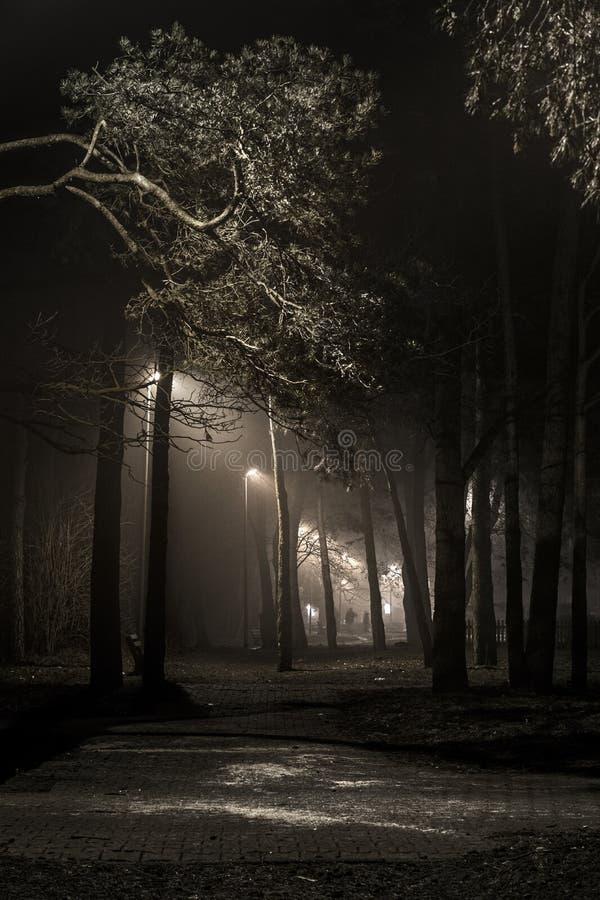 Middernachttansaction royalty-vrije stock fotografie