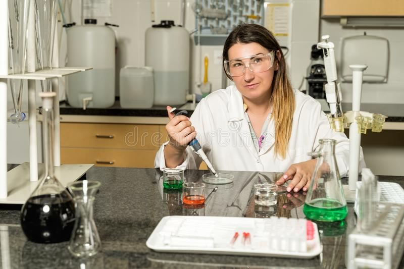 Middle age female laboratory technician  sampling with pipette chemical liquid solution in laboratory stock photography