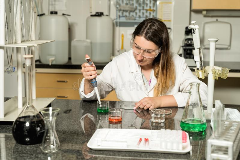 Middle age female laboratory technician  sampling with pipette chemical liquid solution in laboratory stock image