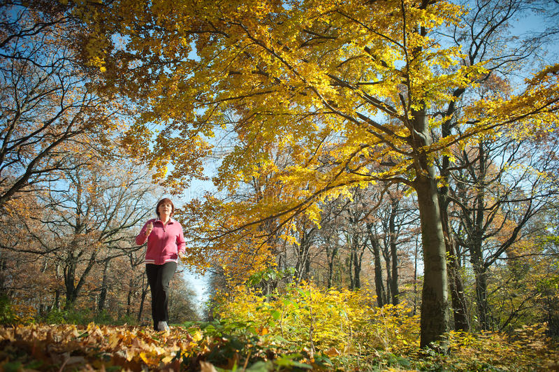 Download Middle age woman stock photo. Image of fall, seasonal - 19244950