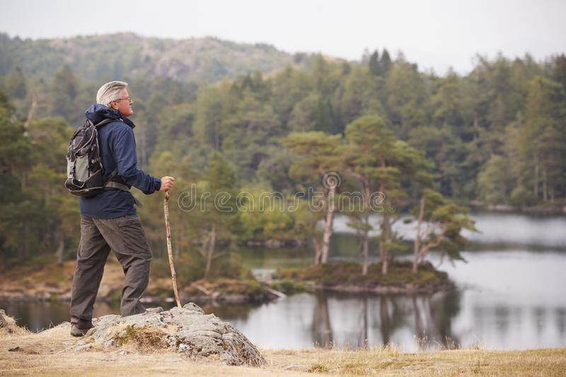 Middle aged man standing on a rock admiring the view of a lake, side view, Lake District, UK stock photos