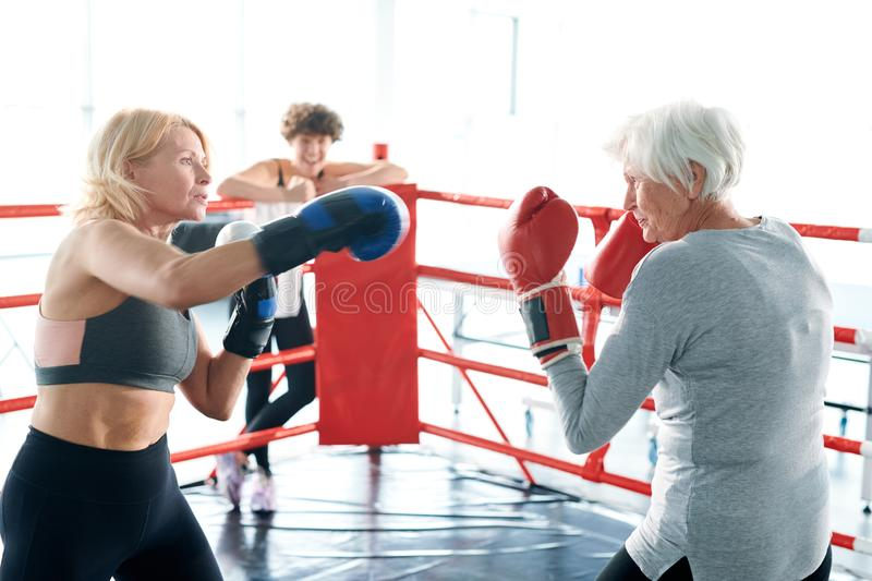 Boxing fight. Middle-aged and senior females in boxing gloves training on the ring before competition or championship royalty free stock photo