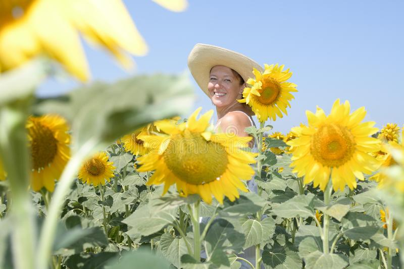 A middle-aged woman with a hat smiles and looks at the camera among the sunflowers. View from below stock image