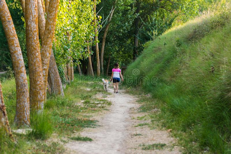 Middle-aged woman walking with her dog on a mountain path stock photography