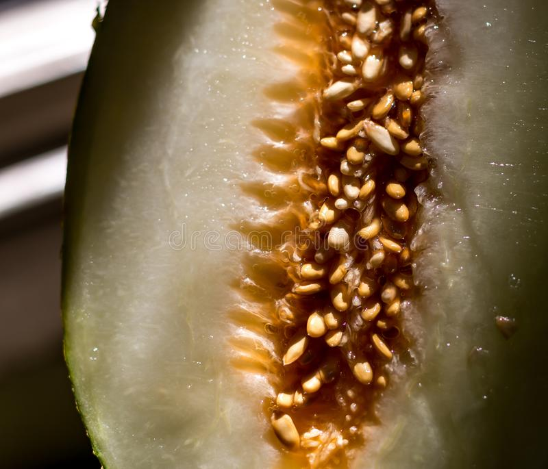 The middle of a melon royalty free stock photography